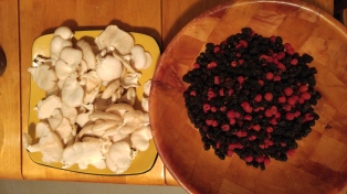 Oysters & Berries