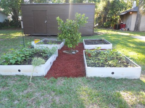 Flagler garden