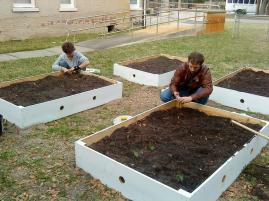 Flagler planting