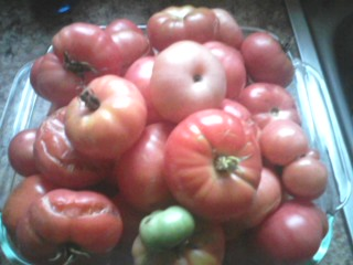 Oaxacan Pink Tomato