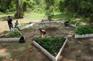 TBY garden3
